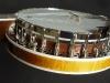 plektrum-banjo-3