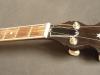 plektrum-banjo-4